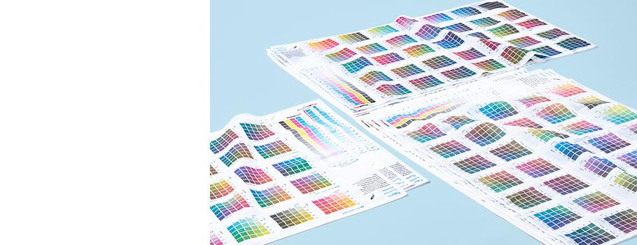 Ghidul culorilor țesături