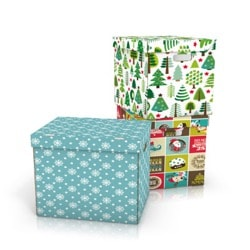 Image of Christmas box