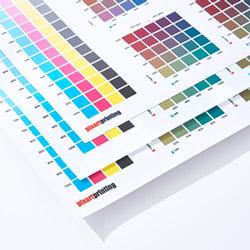 Kleurengids spandoeken en mesh