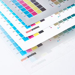 Adhesive PVC Colour Guide